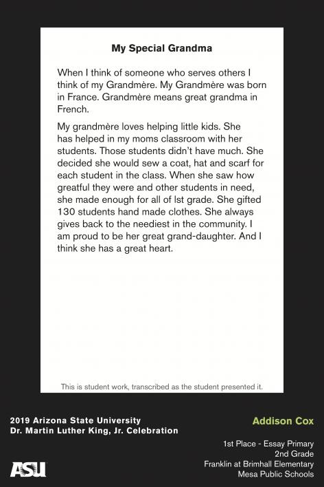 Mlk hero essay