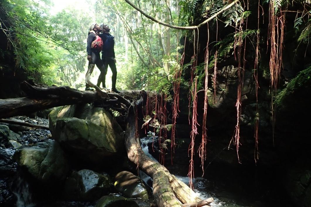 Vergil Haynes goes shower climbing up waterfalls in Japan