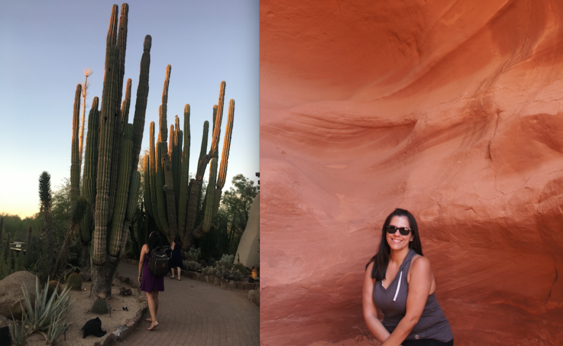 Pic of students exploring large Arizona cactus and red rocks