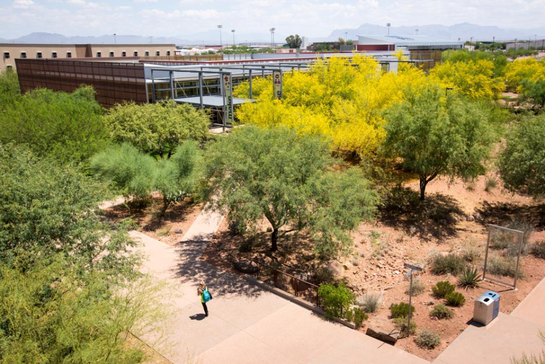 Explore your asu campus polytechnic asu now access for Pond plants mesa az