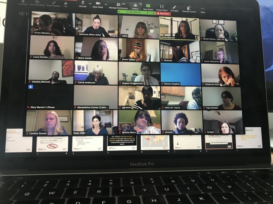 Computer screen showing web meeting