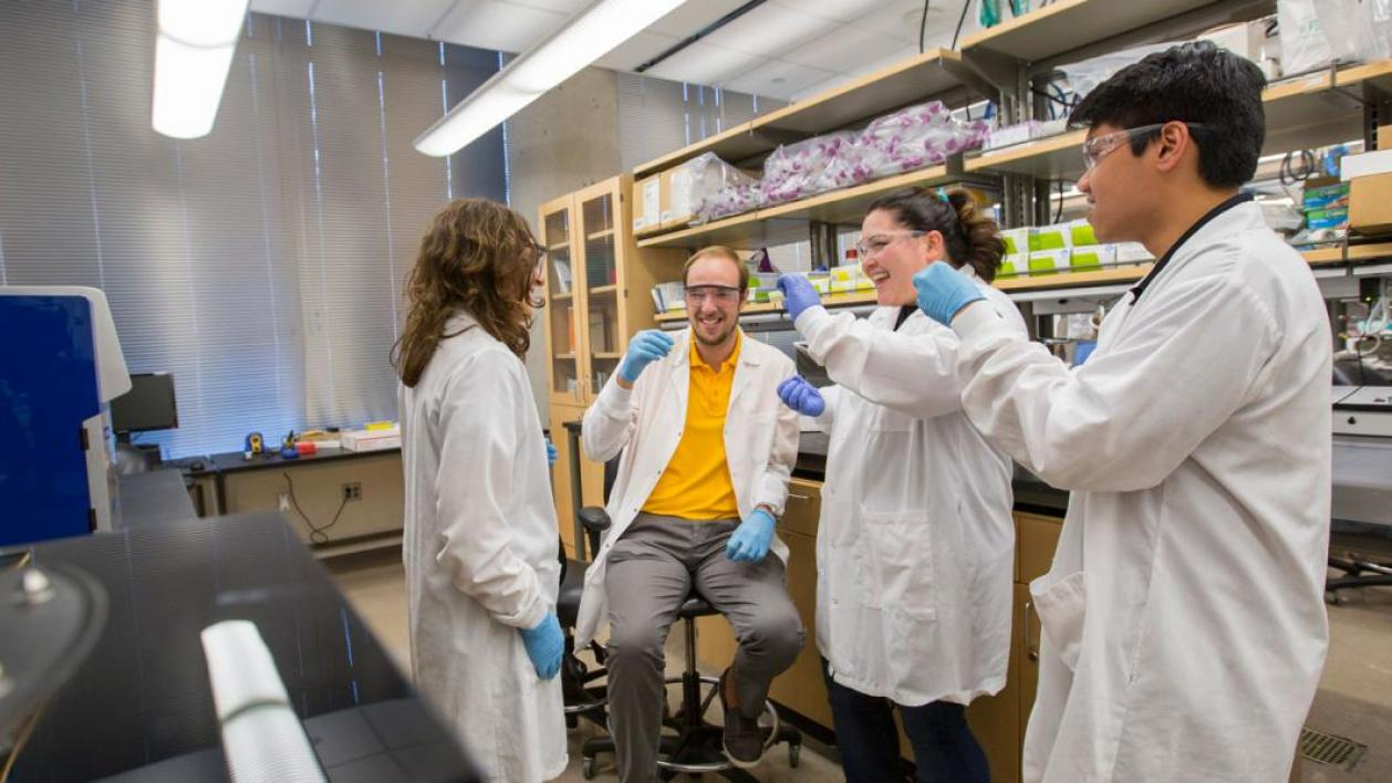 Kaleia Kramer and other students work in Assistant Professor Barbara Smith's lab.