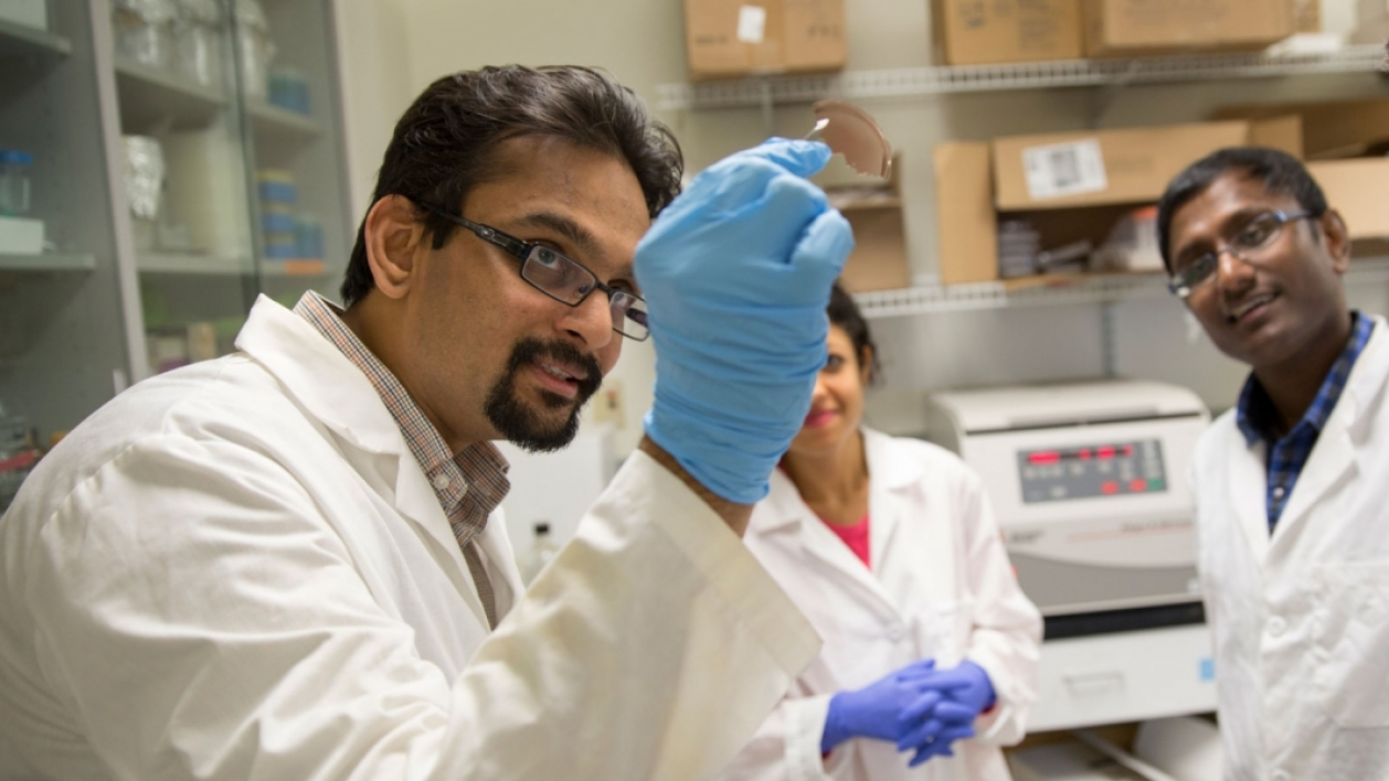 Kaushal Rege, a professor of chemical engineering, works with graduate students in the Rege Bioengineering Lab.