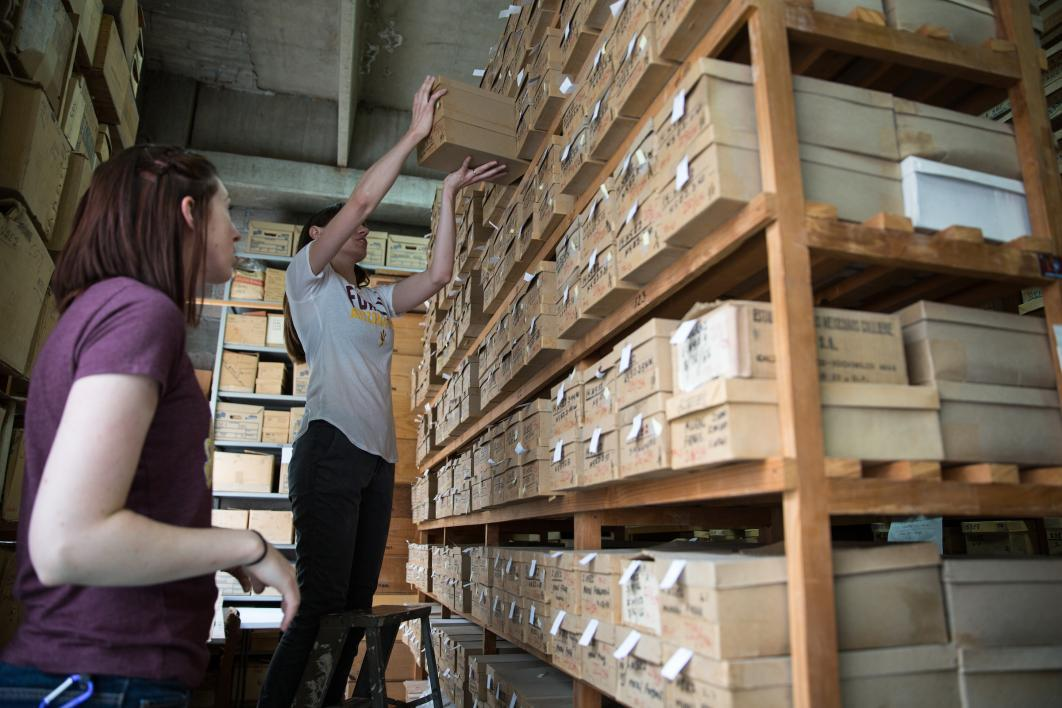 Two museum studies students organize the collection at the Teotihuacan Research Laboratory