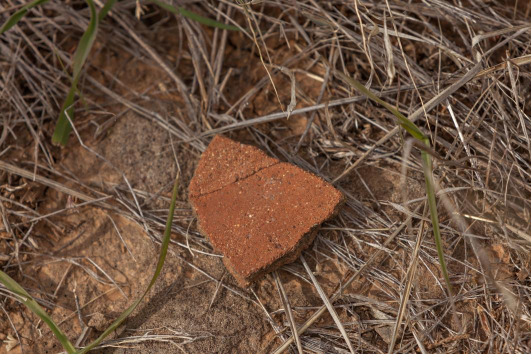 potsherd laying on ground in Perry Mesa