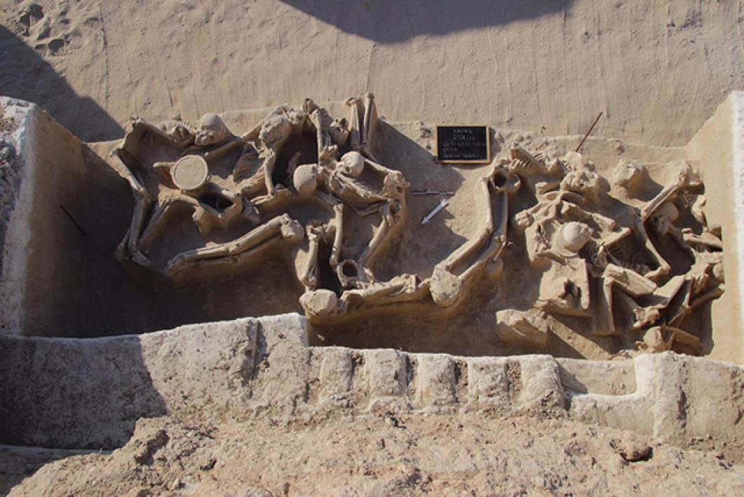 Ancient skeletons in a mass grave.