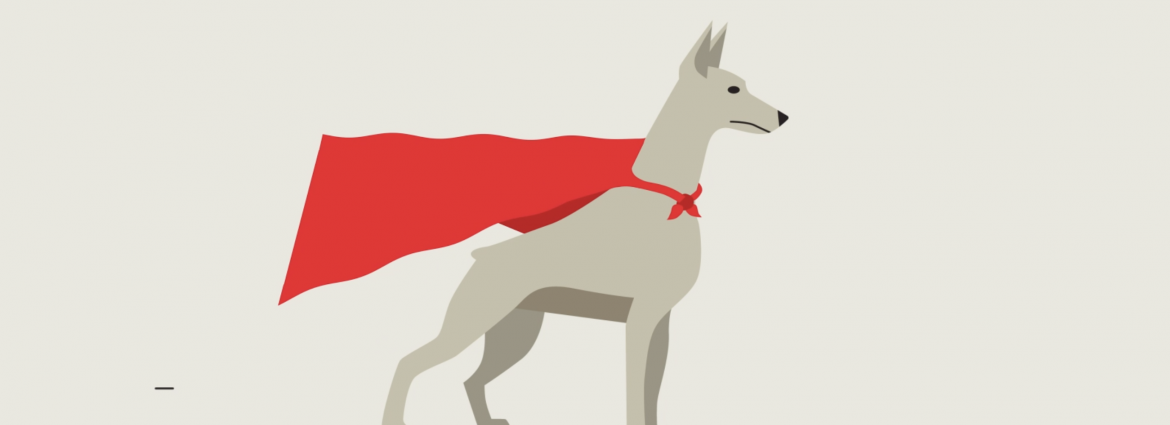 illustration of a dog in a cape