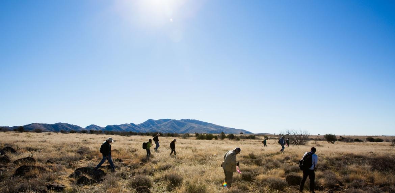 volunteers surveying Perry Mesa
