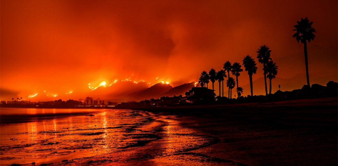 Shoreline and palm trees silhouetted by wildfires and smoke in the background.