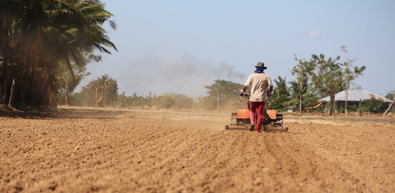 Man plowing field