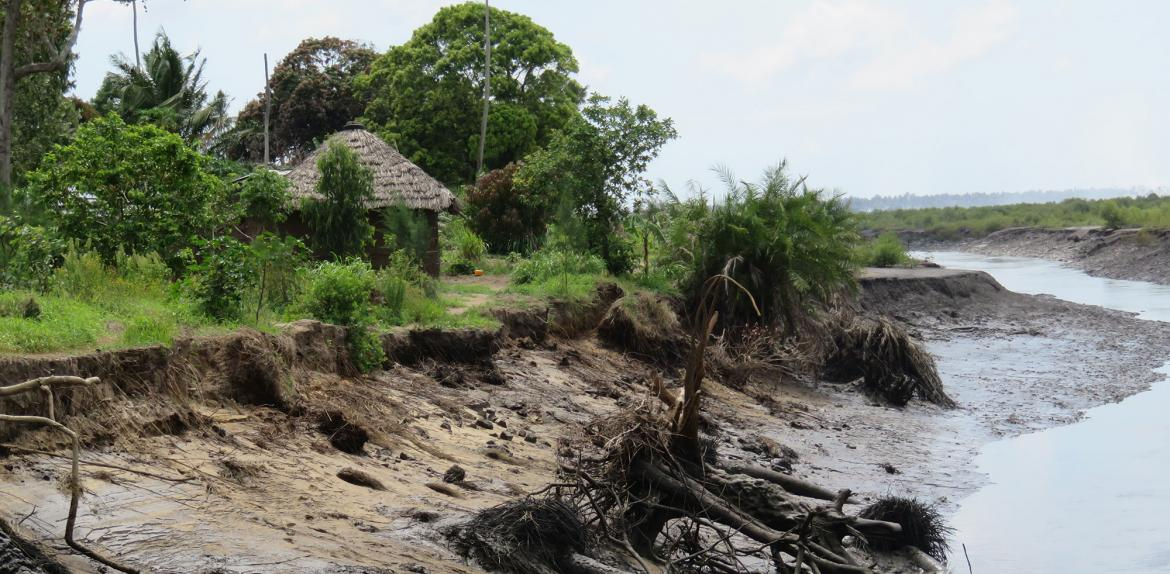 Mangrove deforestation causes serious erosion in Quelimane, Mozambique