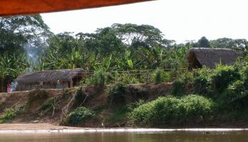 photo of Tsimane house seen from river