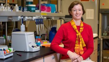 ASU Regents' Professor Anne Stone
