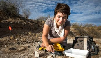 ASU postdoctoral researcher Christina Kwapich collects a sample of ants