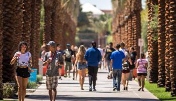 Students walk along Palm Walk