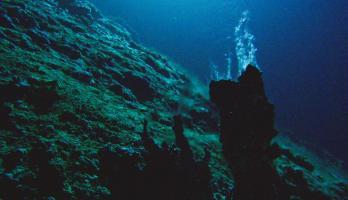 Gorda Ridge undersea vent Ocean Exploration Trust