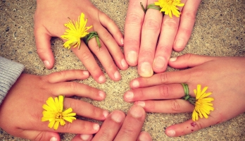 Hands and flowers