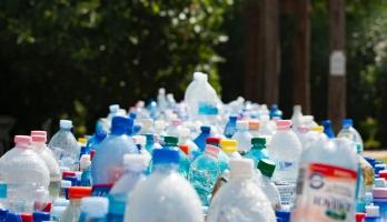 dozens of plastic bottles lined up together