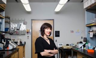 ASU CRISPR expert Samira Kiani
