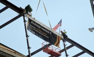 The final beam is hoisted to the top of Biodesign C