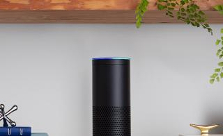 Amazon Echo device on bookshelf