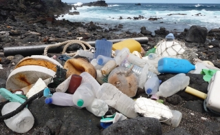 ascension island plastic pollution