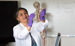 ASU Polytechnic campus faculty member Emel Topal pointing out a brain structure with model human skeleton in backdrop