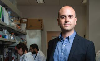 Assistant Professor Nicholas Stephanopoulos
