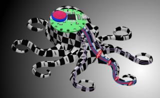Soft robotics modeled on an octopus tentacle
