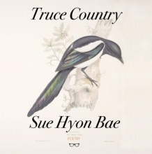 Cover of Truce Country by Sue Hyon Bae with illustration of bird on it