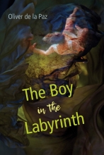 Cover of The Boy in the Labyrinth by Oliver de la Paz