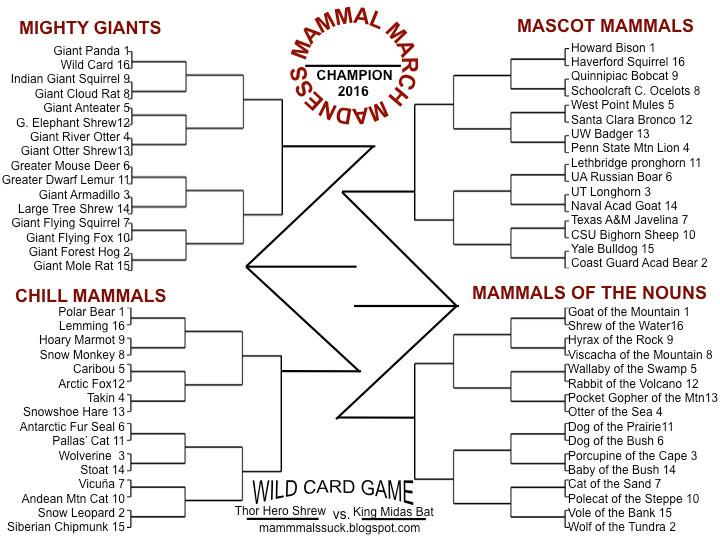 March Mammal Madness