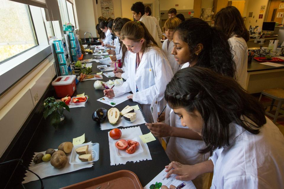 Barrett Summer Scholars dissect fruit and veggies.