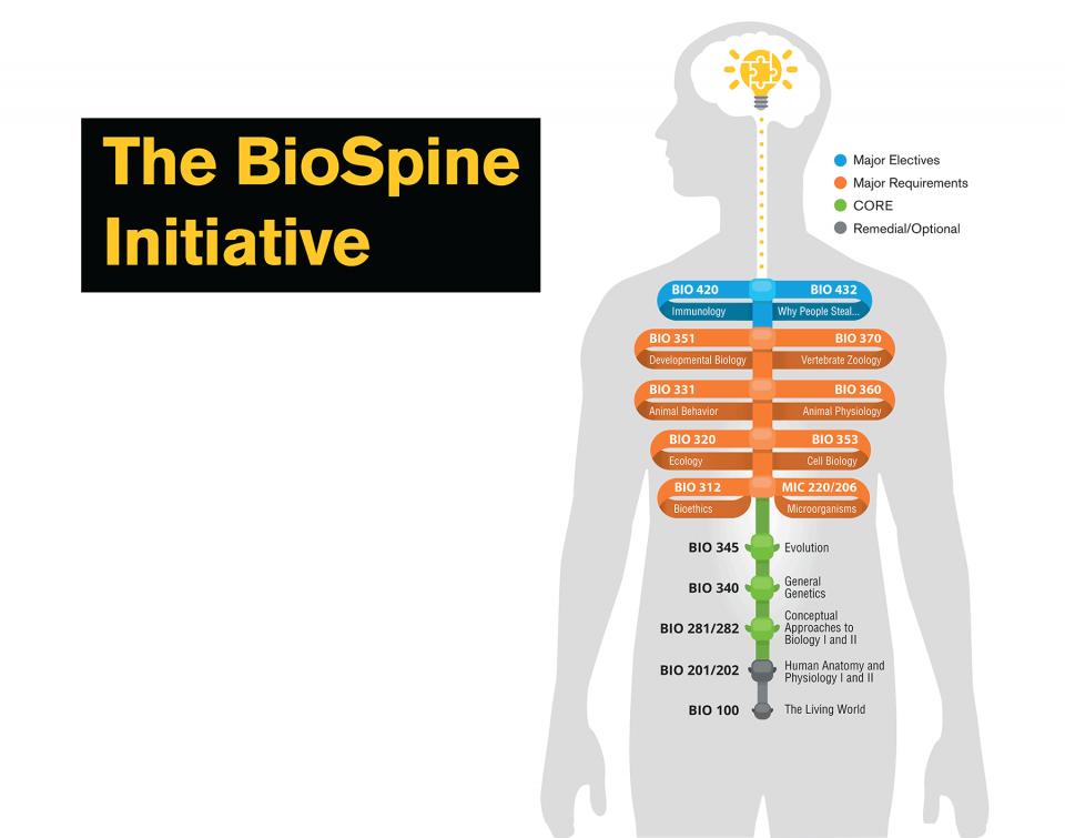 BioSpine Initiative
