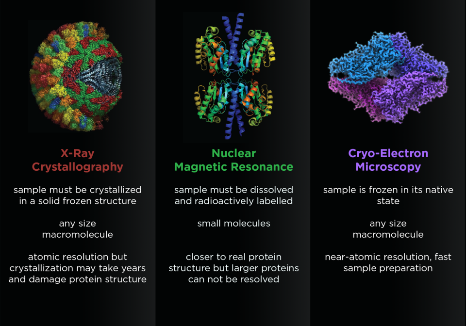 Bioimaging graphic