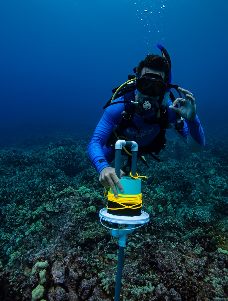 A diver prepares a camera trap to study local fish populations