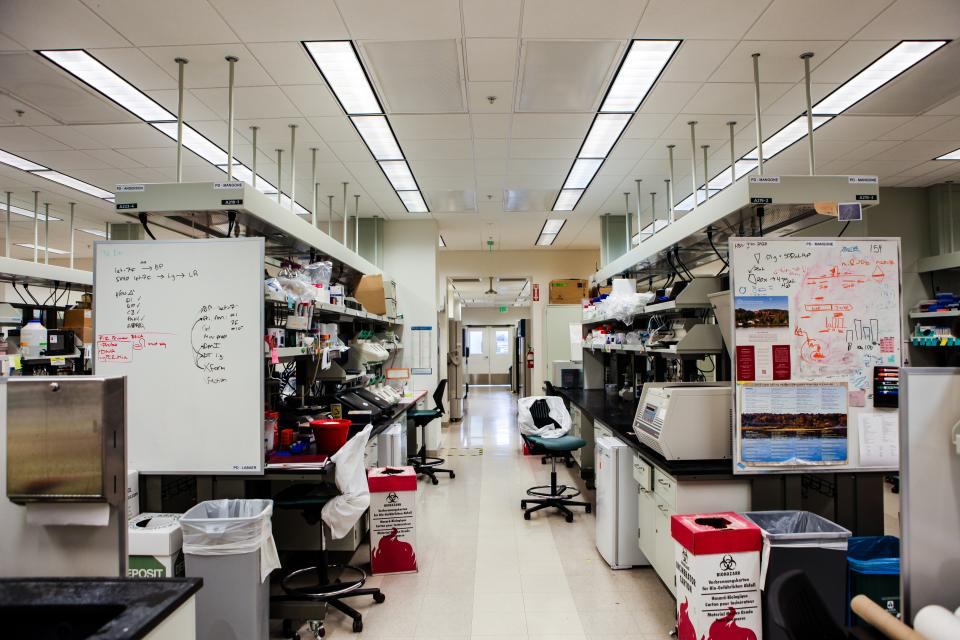 Lab at ASU Virginia G. Piper Center for Personalized Diagnostics