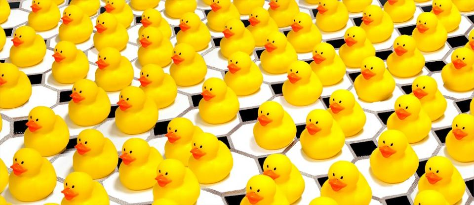 Yellow rubber ducks in a row.