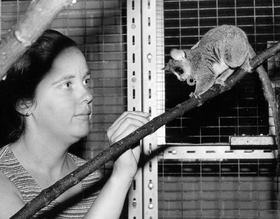 Leanne Nash and a galago.