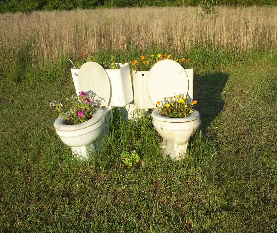 Grass growing out of twin toilets
