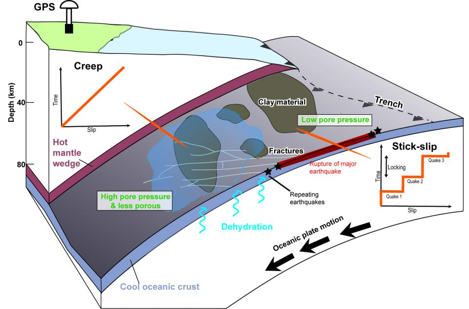 A conceptual model of the creep mechanism in northeast Japan