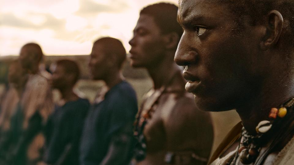 Roots, 2016.