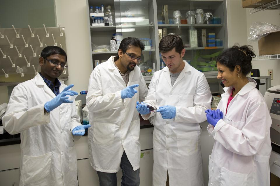 four people working in lab