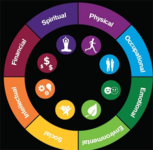8 dimensions of wellness on a color wheel