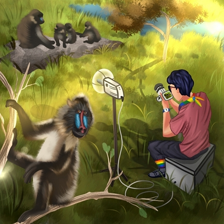 illustration of person in field studying primates