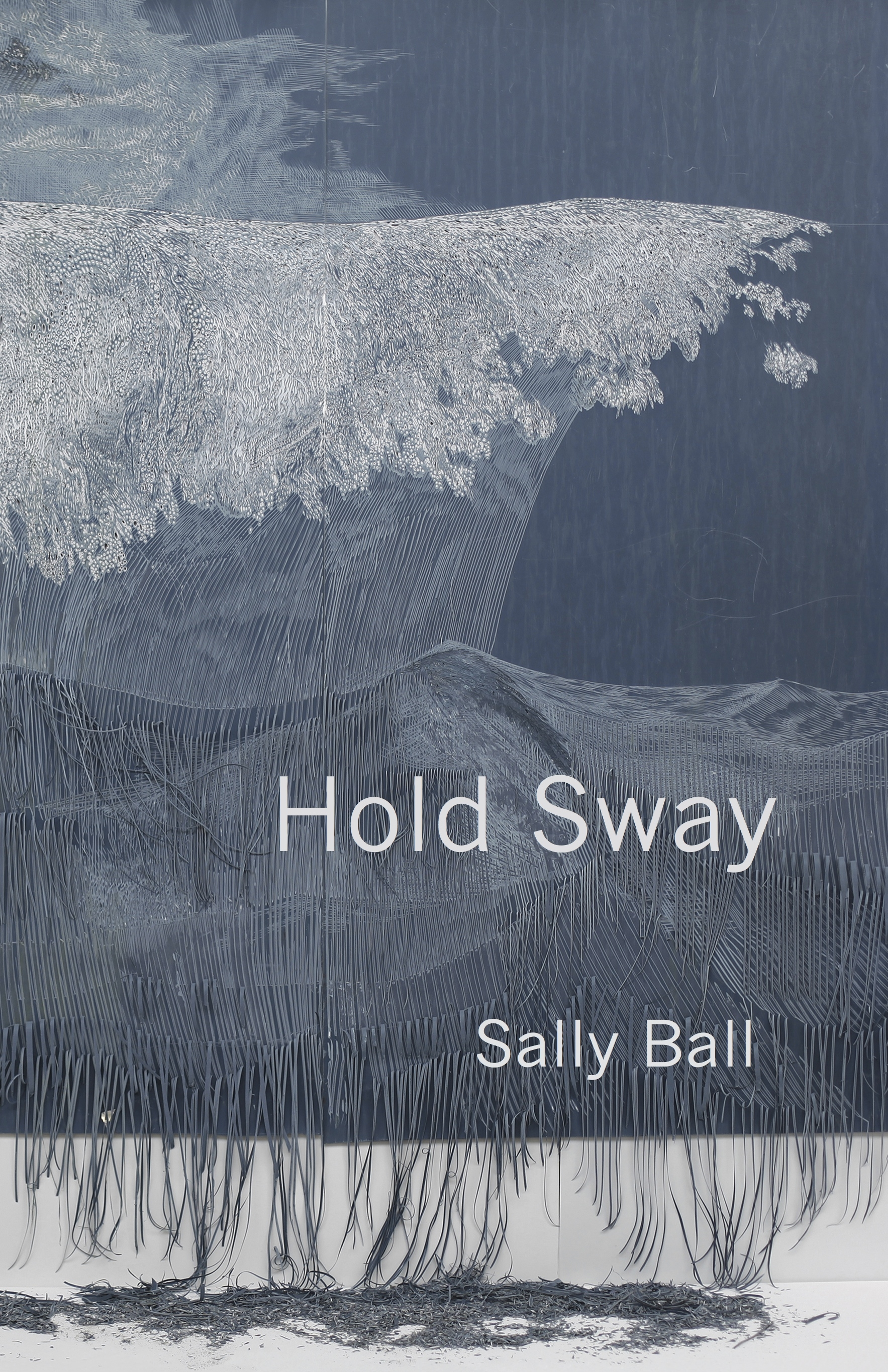 "Cover of ""Hold Sway"" by Sally Ball (Barrow Street Press 2019)"