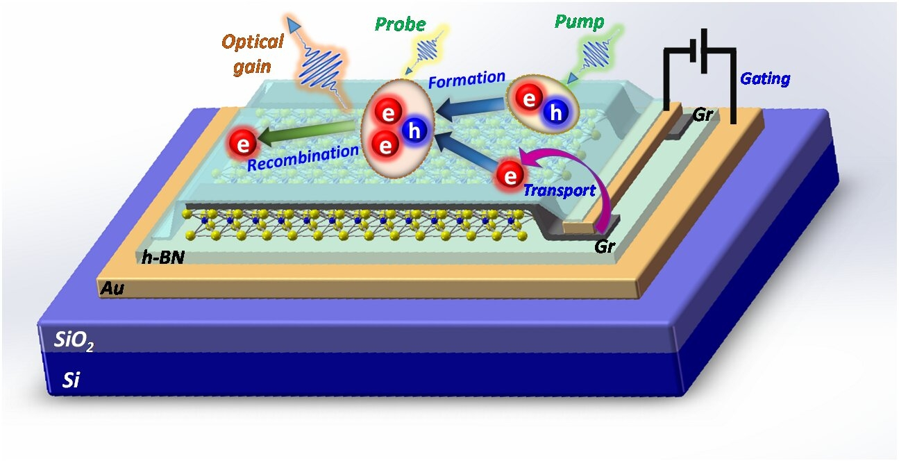 The process Cun-Zheng Ning and his team used to create nanolasers with 2D semiconductor materials.