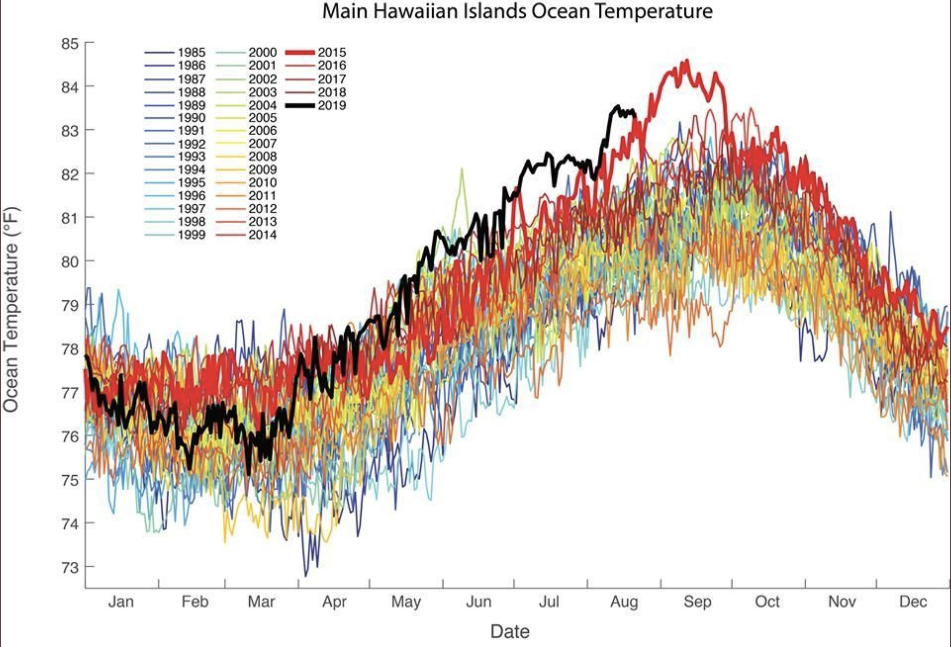 Ocean heatwave shows warming temperatures