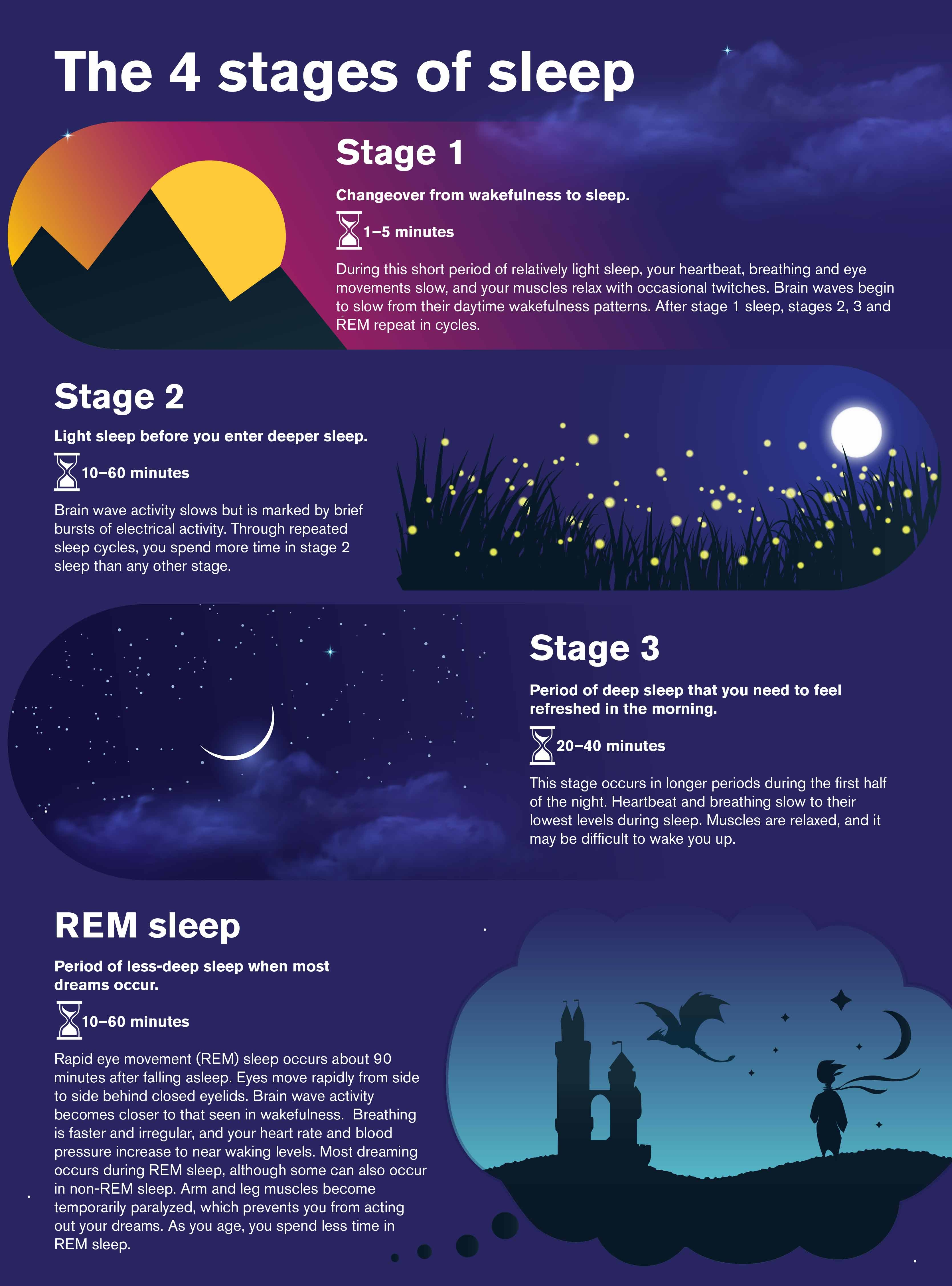 Illustration and text on 4 stages of sleep. Stage 1, changeover from wakefulness to sleep. Stage 2, light sleep before you enter deeper sleep. Stage 3, period of deep sleep that you need to feel rested. REM sleep, period of less-deep when you dream. sle