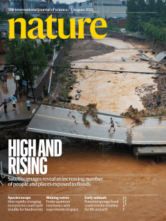 A flooded street on the cover of Nature magazine
